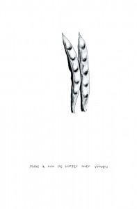 http://www.sarabomans.be/files/gimgs/th-15_SB-bones-005.jpg